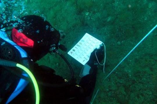 L'Alma Mater in campo per il monitoraggio degli ambienti marini nelle isole dell'Arcipelago Toscano