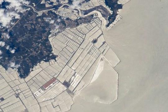Sviluppo urbano sugli oceani: le strutture marine hanno già modificato un'area di 2 milioni di chilometri quadrati